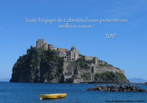 voeux-labexmed-2017